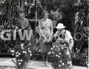 Welcome to Danger -  from photo cut from sequence - Harold Lloyd spraying roses