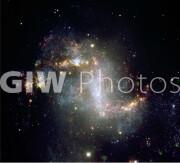The Topsy-Turvy Galaxy NGC 1313