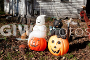 Autumn scene in Pomfret, CT