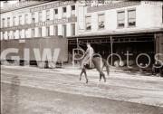 New York City. Railroad cars and equestrian signalman on 11th Avenue.