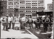 New York City. July 7, 1911. Watering horses on a hot day.
